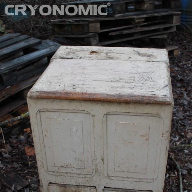 Restaurare Lemn cu Gheață Carbonică 11