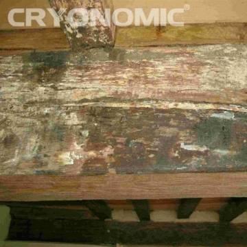 Restaurare Lemn cu Gheață Carbonică 9