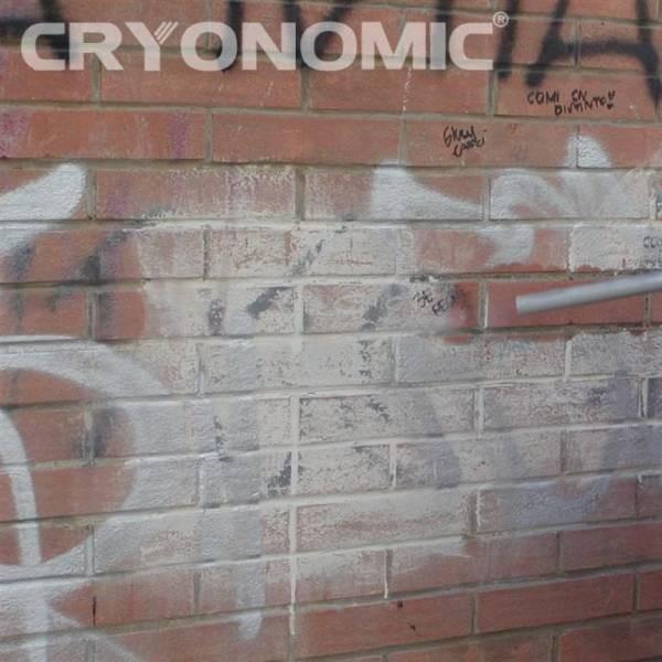 Îndepărtare Graffiti și vopsea 2