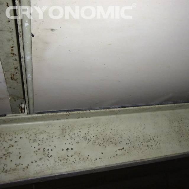Curățare pereți, plafoane etc. Industria Alimentară 3