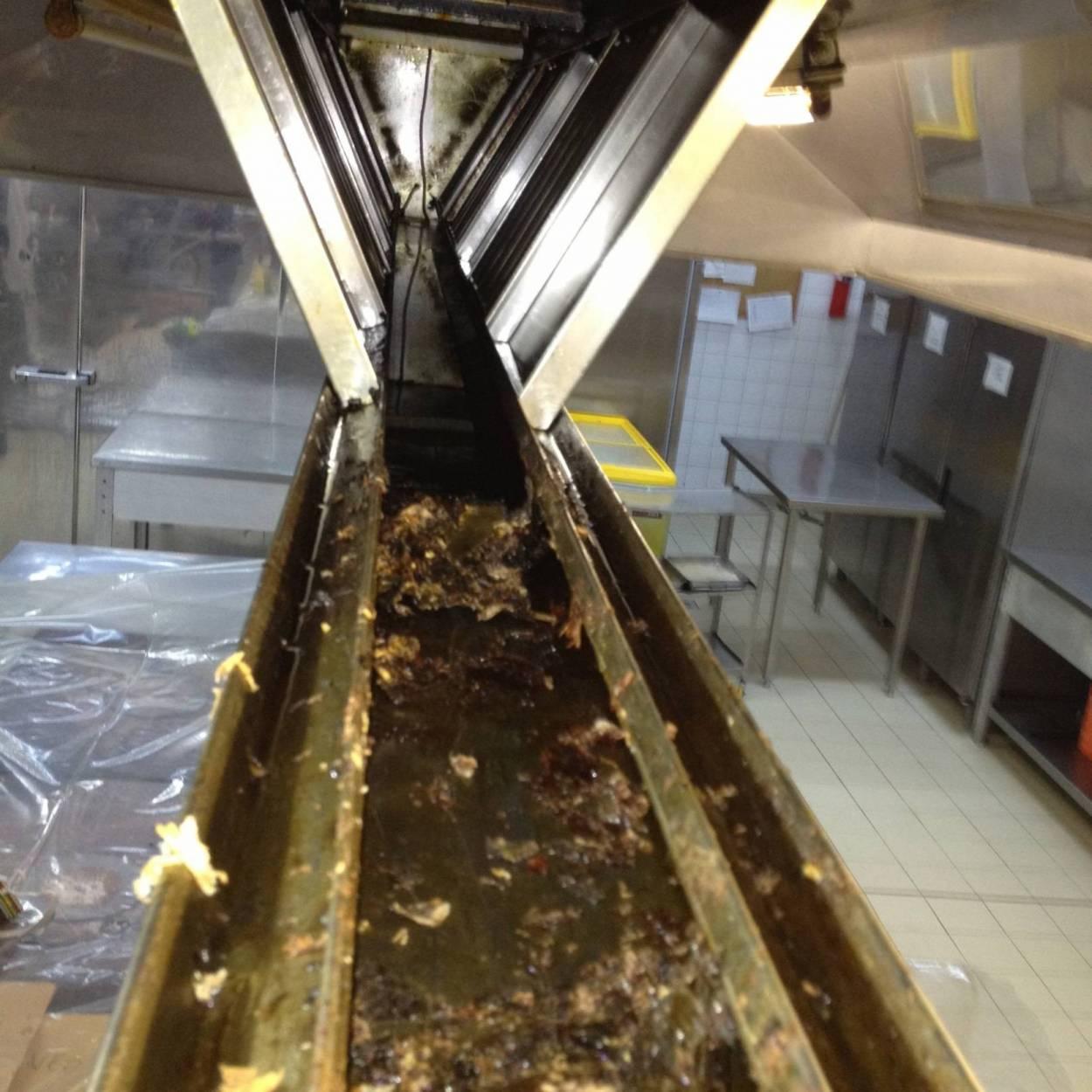 Servicii de Curățare & Dezinfecție în Restaurante / Bucătării Profesionale 11