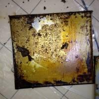 Servicii de Curățare & Dezinfecție în Restaurante / Bucătării Profesionale 5